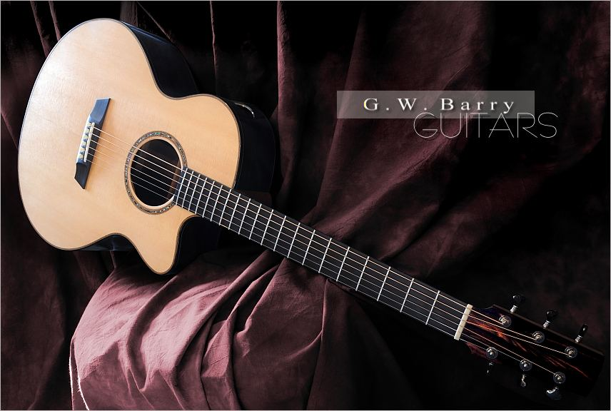 GW Barry Guitars